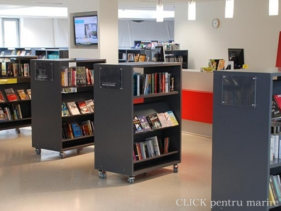 Mobilier Librarii
